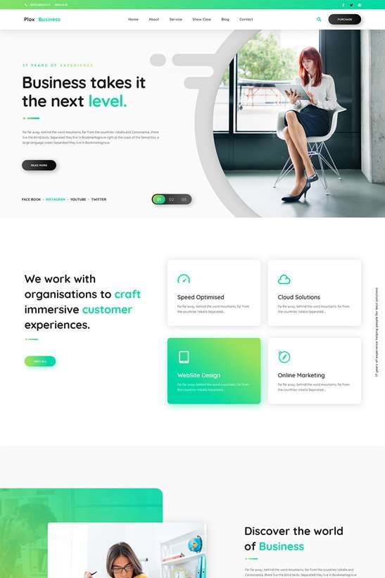 phlox-wordpress-theme-business2