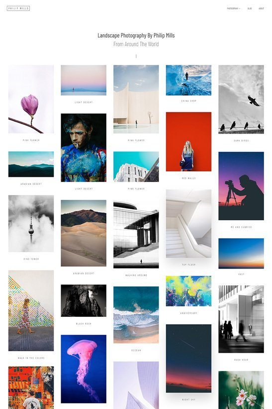 phlox wordpress theme photography